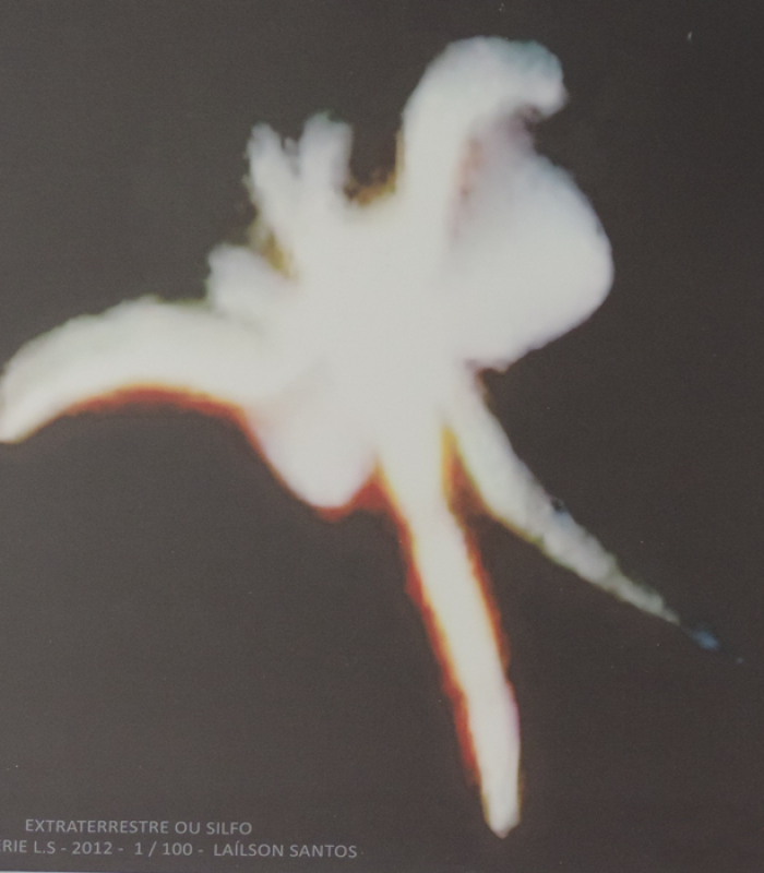 Tela canva – Extraterrestre ou Silfo